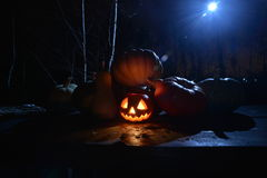 Halloween Pumpkin under the moonlight. In  dark forest Royalty Free Stock Photography