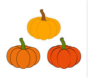 Halloween pumpkin vector illustration set isolated on white background. Royalty Free Stock Photography