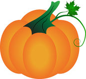Halloween pumpkin vector illustration on white background Royalty Free Stock Photography