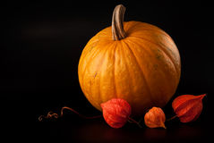 Halloween pumpkin vegetable on black Royalty Free Stock Photo
