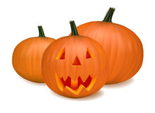 Halloween pumpkin vegetables. Vector Royalty Free Stock Photography