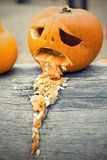 Halloween pumpkin vomit throw up on the tree trunk Royalty Free Stock Photo