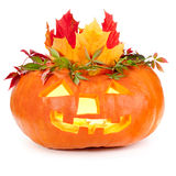 Halloween pumpkin on white background Stock Image