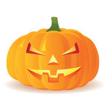 Halloween Pumpkin  on white background,  Stock Photos