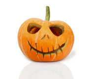 Halloween Pumpkin on white background Royalty Free Stock Image