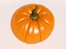 Halloween Pumpkin on White Royalty Free Stock Photo