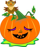 Halloween Pumpkin and Wise Owl Stock Image
