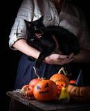 Halloween pumpkin and woman with furious black cat. Selective focus Royalty Free Stock Photos