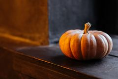 Halloween pumpkin on wooden background royalty free stock images