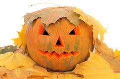 Halloween pumpkin. Yellow halloween pumpkin close up Stock Image