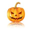 Halloween Pumpkin for you design Royalty Free Stock Photography