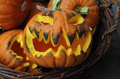 halloween pumpkins στοκ εικόνα