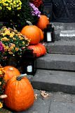 Halloween pumpkins. On the stairs Stock Photography