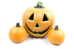 Halloween Pumpkins. Three halloween pumpkins on white background Stock Photography