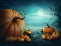 Free Halloween Pumpkins Royalty Free Stock Image - 44273656
