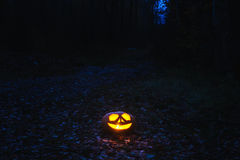 halloween pumpkins Στοκ φωτογραφίες με δικαίωμα ελεύθερης χρήσης