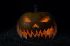 halloween pumpkins Στοκ εικόνα με δικαίωμα ελεύθερης χρήσης