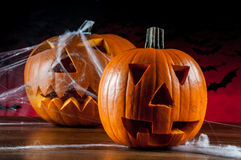 Halloween pumpkins, ambient light. Colorful, ambient halloween concept of scary pumpkins Royalty Free Stock Photography