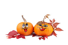 Halloween pumpkins with autumn leaves Stock Images