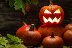 Halloween pumpkins on autumn leaves Royalty Free Stock Images