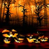 Halloween pumpkins on the background of a dark forest Stock Photo