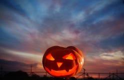 Halloween pumpkins on bakground sunset Stock Images