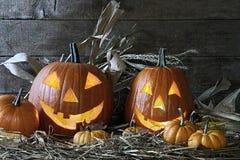 Halloween pumpkins in the barn stock photography
