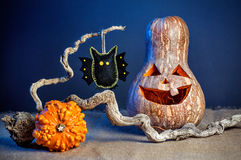 Halloween pumpkins and bat toy Royalty Free Stock Image