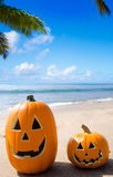 Halloween pumpkins on the beach Royalty Free Stock Photo