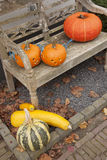 Halloween pumpkins on bench Royalty Free Stock Photography