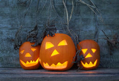 Halloween pumpkins with board Royalty Free Stock Photos
