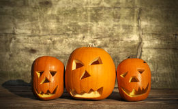 Halloween pumpkins with board Royalty Free Stock Image