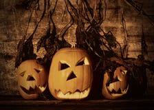 Halloween pumpkins with board Stock Photo