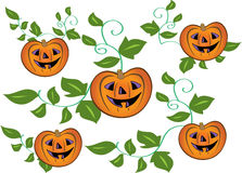 Halloween pumpkins. A cartoon illustration. Five orange spooky Halloween lanterns made from pumpkins with curly stems and green leaves Stock Photography