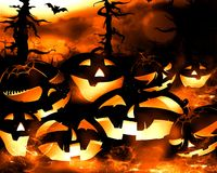 Halloween pumpkins and dark forest at night Stock Image