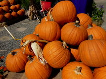 Halloween Pumpkins. Pumpkins everywhere, getting ready for the Fall season.  This photo was taken in Glendale, California Stock Images