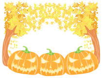 Halloween pumpkins with fall leaves Stock Images