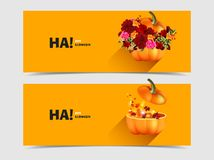Halloween pumpkins with flowers and maple leaves Royalty Free Stock Photography