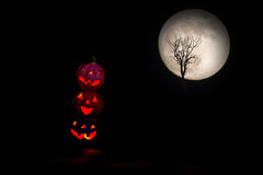 Halloween,pumpkins. full moon and death tree background Royalty Free Stock Image