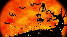 Halloween pumpkins stock video footage