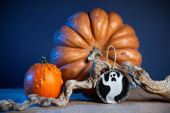 Halloween pumpkins and ghost royalty free stock photography