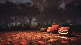 Halloween pumpkins in haunted forest at misty dusk stock illustration