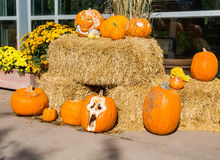 Halloween Pumpkins on Hay Bales Royalty Free Stock Images