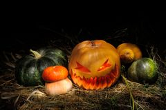 Halloween Pumpkins. On hay outdoors, rural style Royalty Free Stock Photos