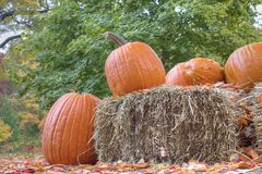 Halloween pumpkins and haystack Royalty Free Stock Photography
