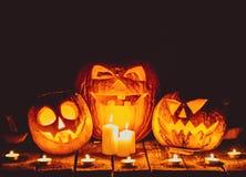 Halloween pumpkins head jack lantern Stock Photos