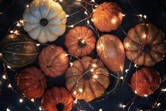 Halloween pumpkins with illumination Stock Images