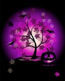 Halloween pumpkins illustration Royalty Free Stock Images