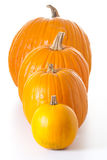 Halloween pumpkins isolated Stock Images