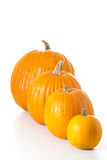 Halloween pumpkins isolated Stock Photography